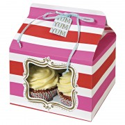 Pink and Red Stripe Cupcake Box Large